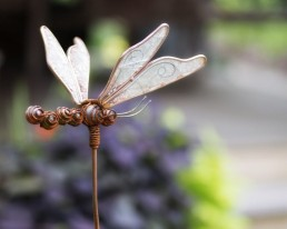 Pocono Bed and Breakfast dragonfly in garden in gallery